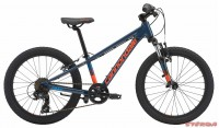 Cannondale Trail 20 Boy's 2018