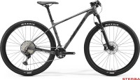 MERIDA BIG.NINE 700 2020
