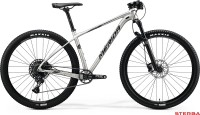 MERIDA BIG.NINE NX-EDITION 2020