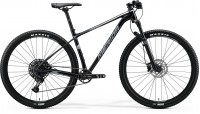 MERIDA BIG.NINE LIMITED-AL 2020
